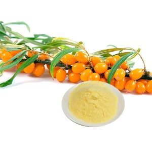 Seabuckthorn powder