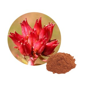 Rhodiola Rosea extract